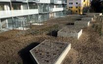 12-zielony-dach-001