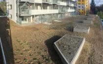 13-zielony-dach-001
