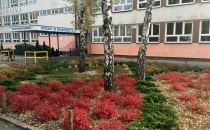 4szkola-podstawowa-nr-20-poznan-001