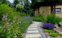 Metamorfozy ogrodów, naturalne kształty